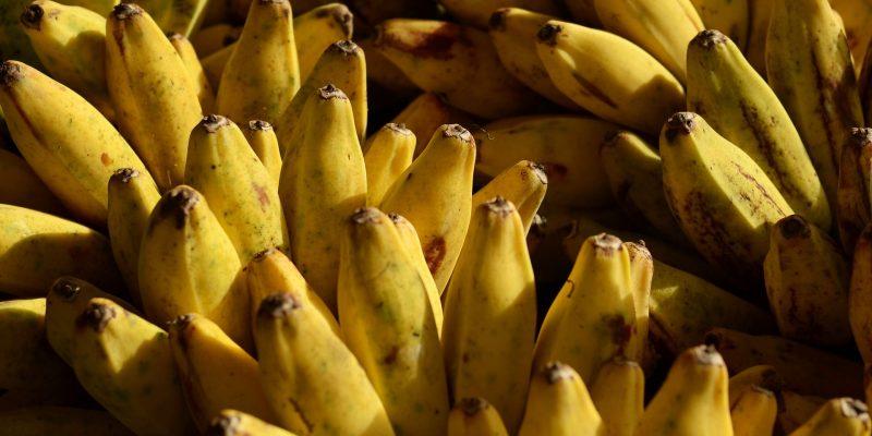 Har du spist en banan i dag?